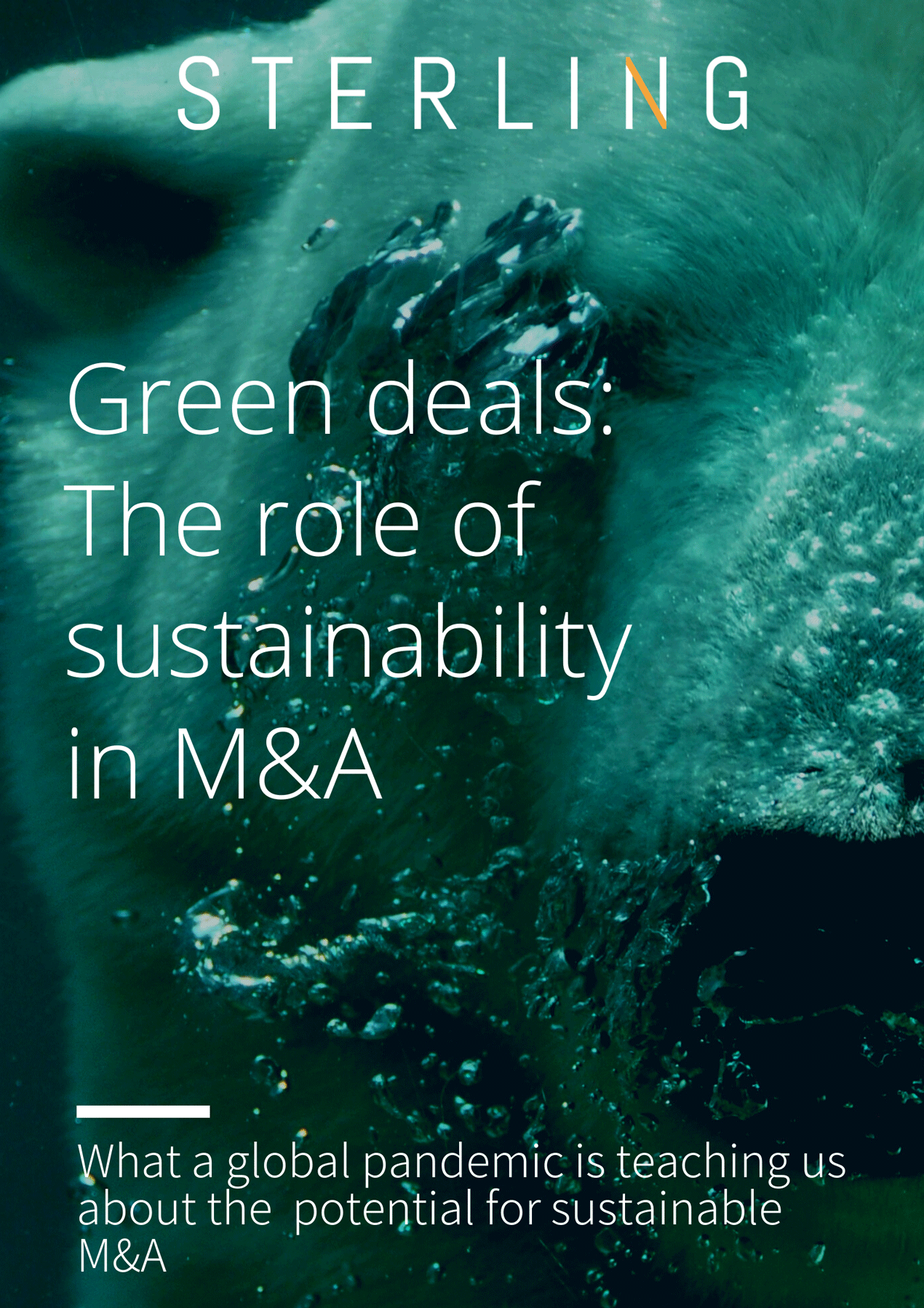 Climate Change + M&A Report Covers
